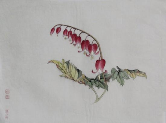 荷包牡丹:花朵玲珑形似荷包